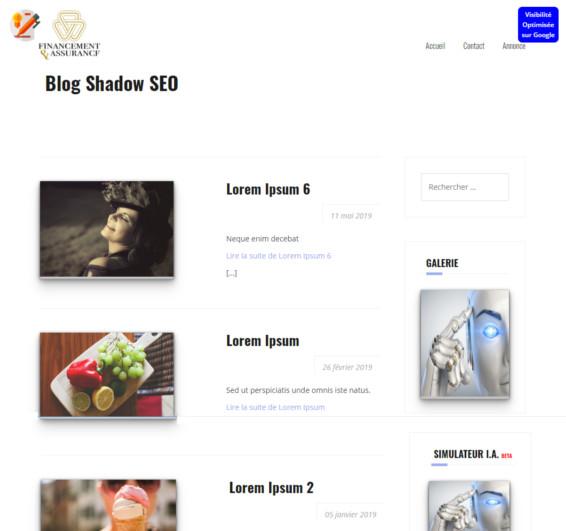 Thème Blog SEO