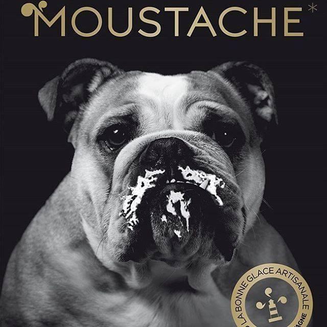 Glacier artisanal Moustache Avignon: Crêpes et glaces artisanales à Avignon